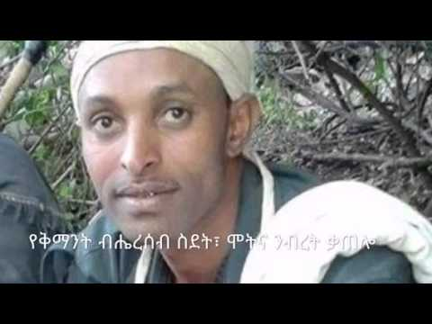 the kemant minority in northern ethiopia politics essay Find a+ essays, research papers, book notes, course notes and writing tips millions of students use studymode to jumpstart their assignments.