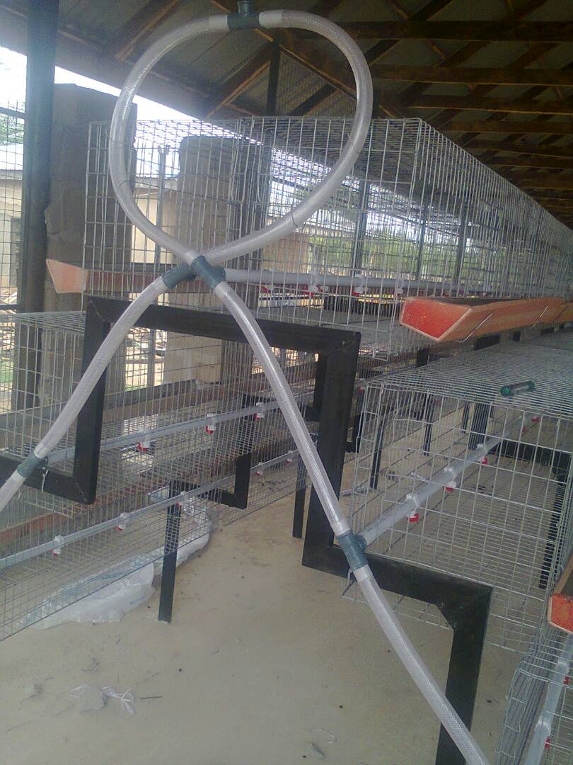 Rabbit And Poultry Battery Cages Manufacturing In Nigeria