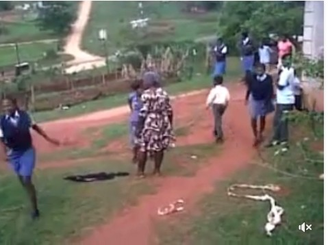 Image result for Lady Strips Another Woman During Public Fight In Front Of School Students. Photos