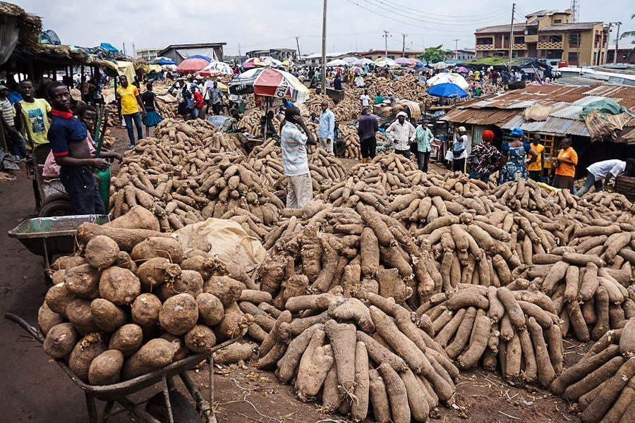 Man Killed For Stealing A Tuber Of Yam In Enugu