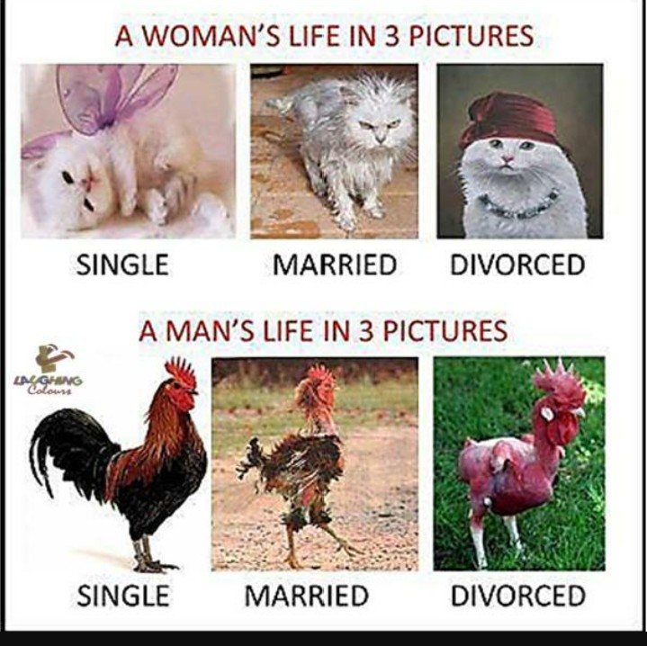 re marriage vs the single life who has it better by pcguru1m 906pm