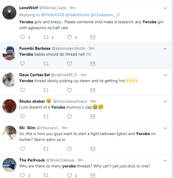 6484259_screenshot1_png23084232167afd48409f2a3f8802a82a Twitter War Between Igbo And Yoruba Over Who Has the Most Beautiful Women (Pics)