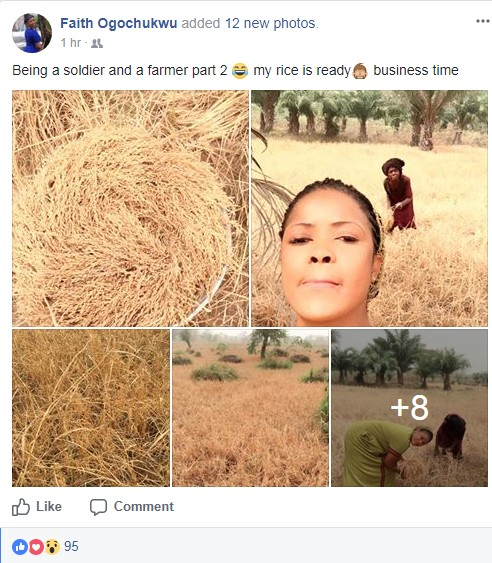 6514285_screenshot4_jpeg67aafda0ccf4c24bfae8bd28d524f933 After 7 Months Of Rice Farming, A Nigerian Soldier Harvested Her Rice (Photos)