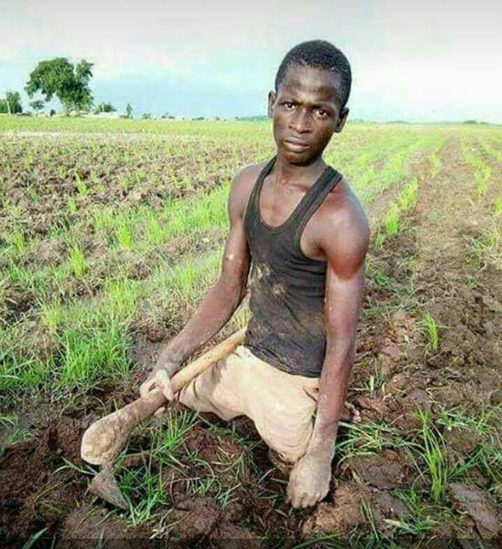 Man Without Legs Ploughing On A Farm (Photos)