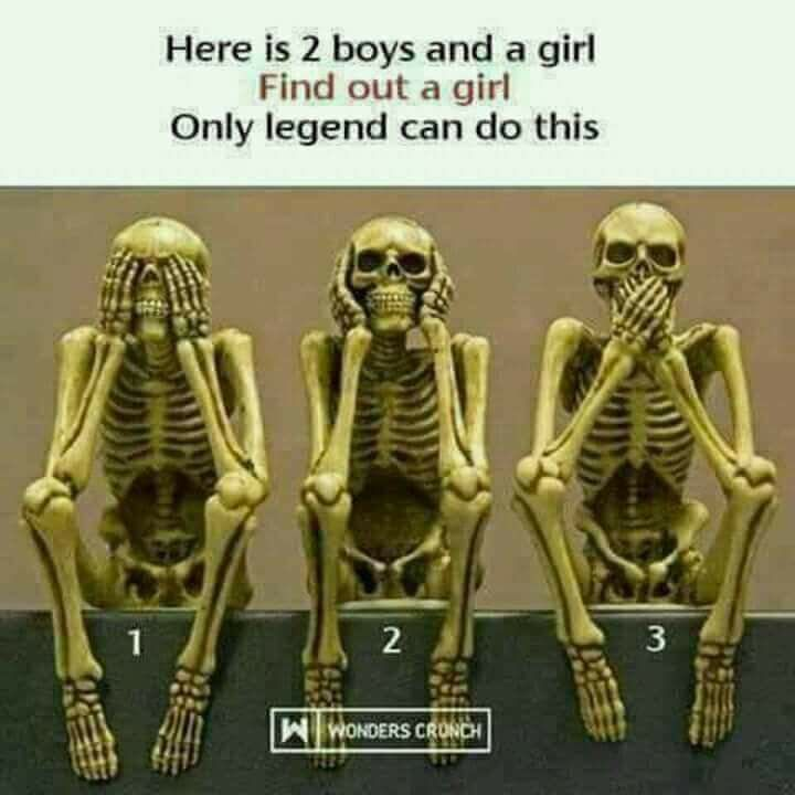 Legends Only Which Of This Skeleton Is A Female Forum Games