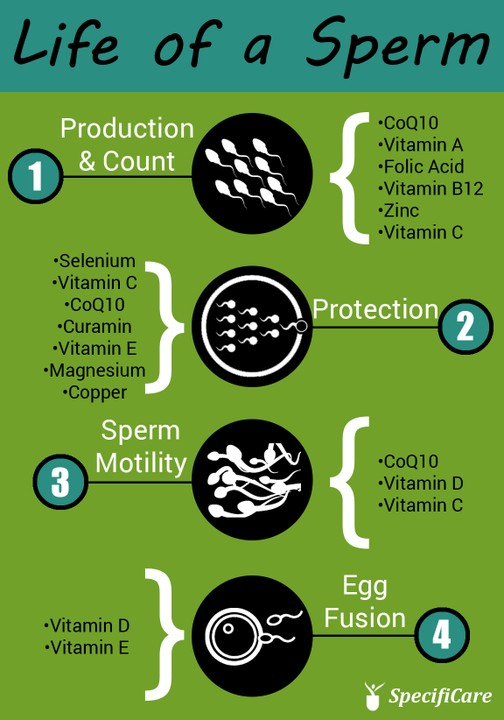 Co q 10 and sperm count suggest