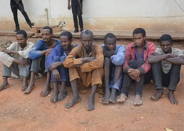 Robbers Arrested By Kwara Police & Weapons Recovered (Photos)