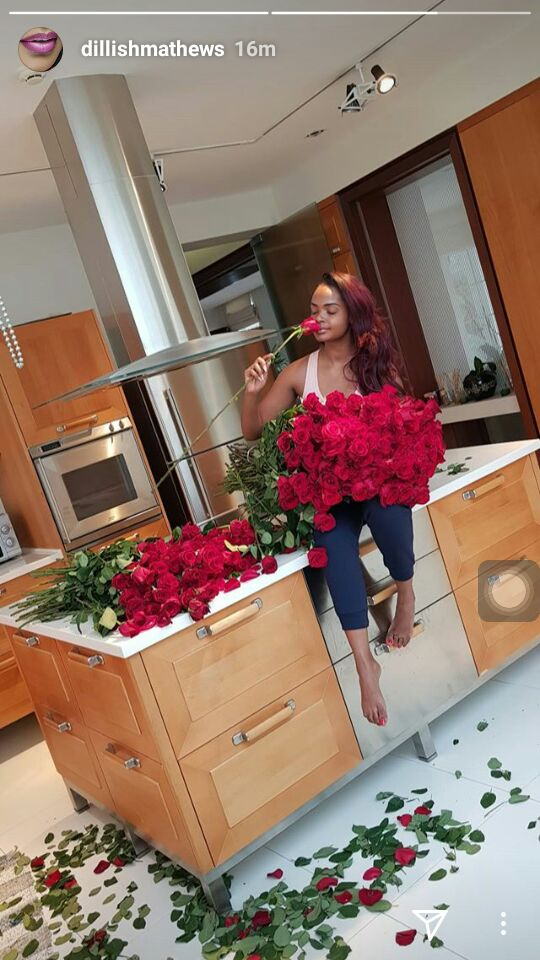 who is dillish dating now im dead wanna hook up significato