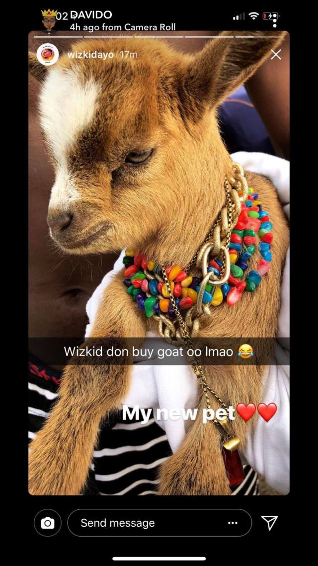 Davido Reacts To Wizkid's New Pet Goat