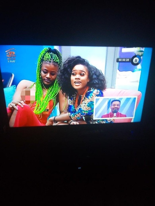 BBNaija: Alex Suffers Nip Slip On Live Eviction Show - TV/Movies - Nigeria