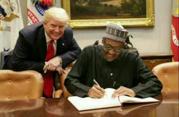 What Agreement Did Buhari Sign With Donald Trump Pic Politics