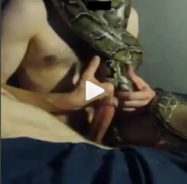 Man having sex with a snake