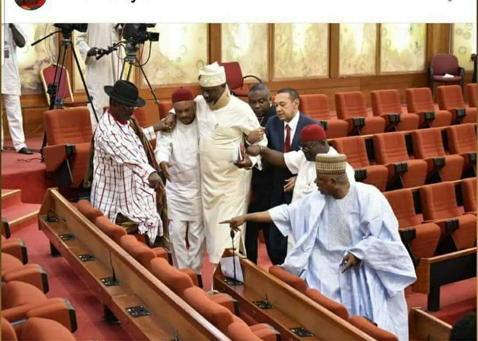 Image result for Pictures Of Dino Melaye Before And After He Entered The Senate Chamber