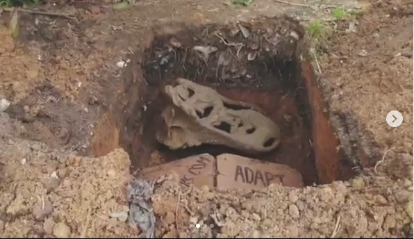 SHOCKING !!!:   'Adapt Or Die': More Photos Of Mysterious Bones Found In Lagos With Warning Message