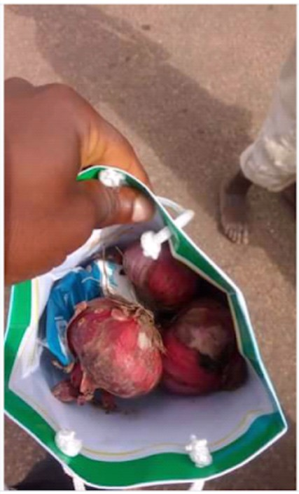 SHOCKING !!!:  Yahaya Bello's SSA Accused Of Wooing Voters With Onion, Maggi, Salt & Cash (Pics)