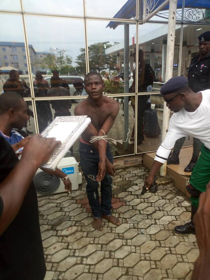 Cultists Who Killed 100L Student Over New iPhone, Arrested In Bayelsa