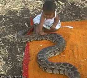 Family Gives 6 Month Old Baby Python For Toys Nairaland General