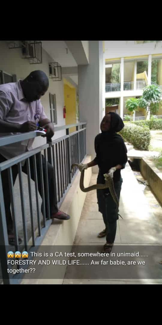Photo Of A Female Student Holding Python In University Of Maiduguri For Her CA Test