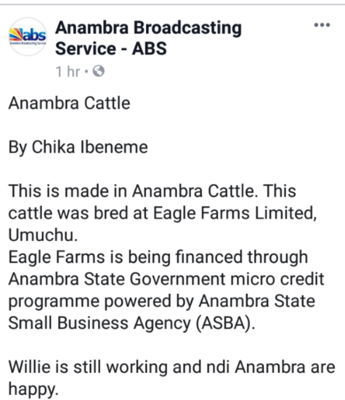 Made In Anambra Cattle Hit Market - ABS (Photos