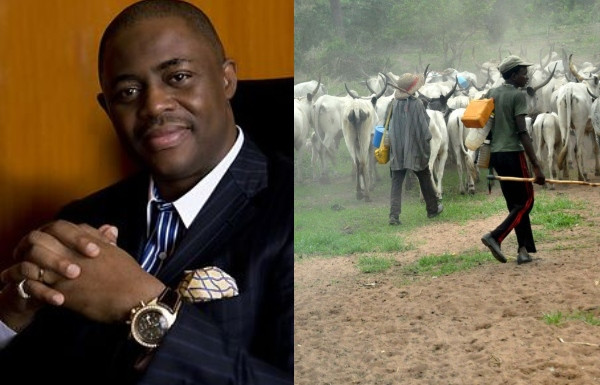 Femi Fani-Kayode South-West Governors Over Response To Northern Elders' Advice To Herdsmen 1